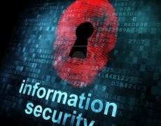 13931458-fingerprint-and-information-security-on-digital-screen-3d-render[1]